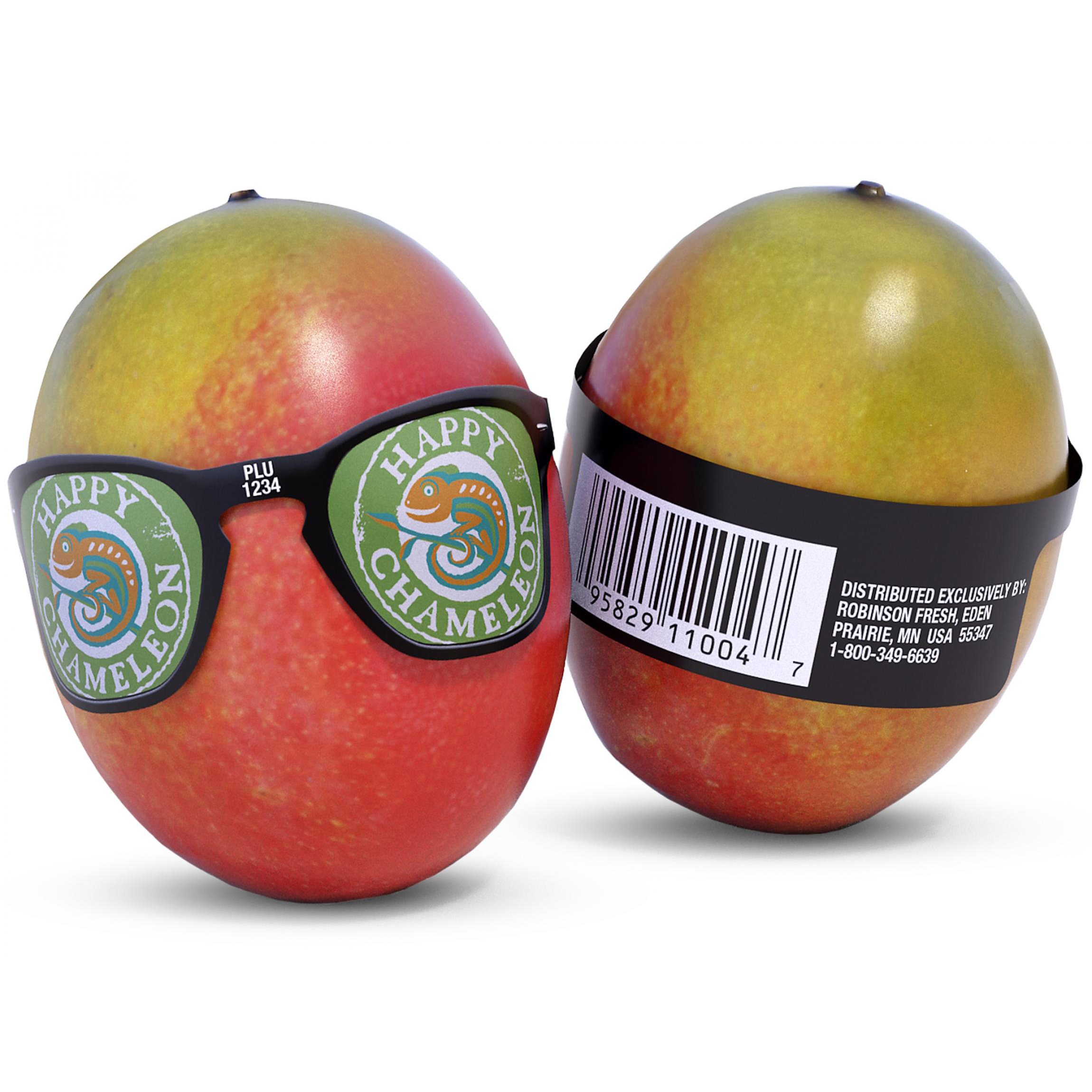 3D render for unique Cool Mangos packaging.